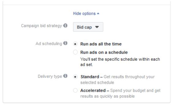 Facebook bid cap setting